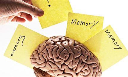 Ictus, svelato il circuito della memoria