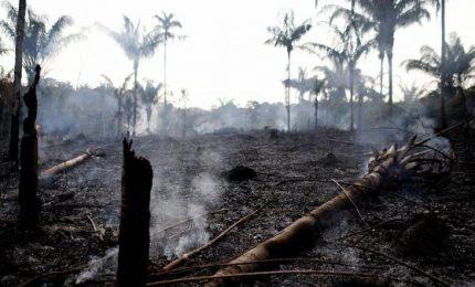 Amazzonia in fiamme, ma Bolsonaro accusa ong