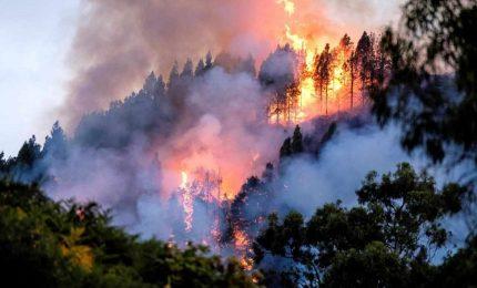 Sicilia nella morsa degli incendi, Musumeci ad Altofonte
