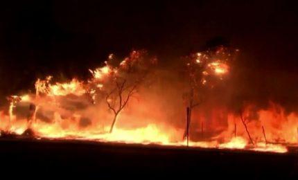 Maxi incendio a nord di Los Angeles, evacuate 100mila persone