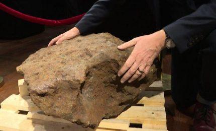 All'asta meteorite record dal peso di 364 Kg