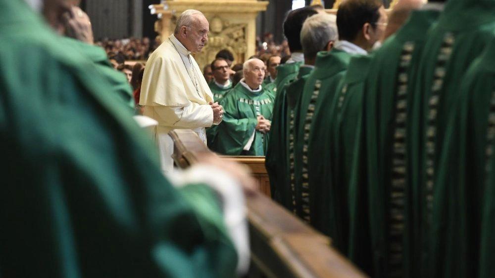 """Papa: allarme Amazzonia, """"no a nuovi colonialismi"""""""