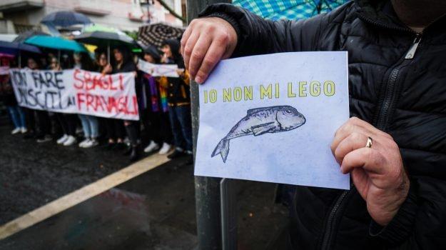 """A Palermo 4 mila """"sardine"""": """"Pulisti la festa è finita"""""""
