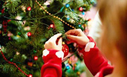 Natale, quanto costa l'albero alle famiglie italiane
