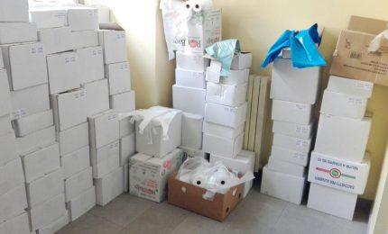 Sequestro in tutta Italia di sacchetti di plastica illegali