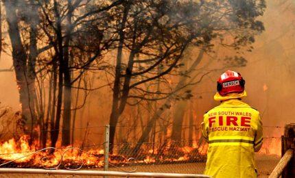 Incendi e caldo, dichiarato lo stato d'emergenza a Sydney