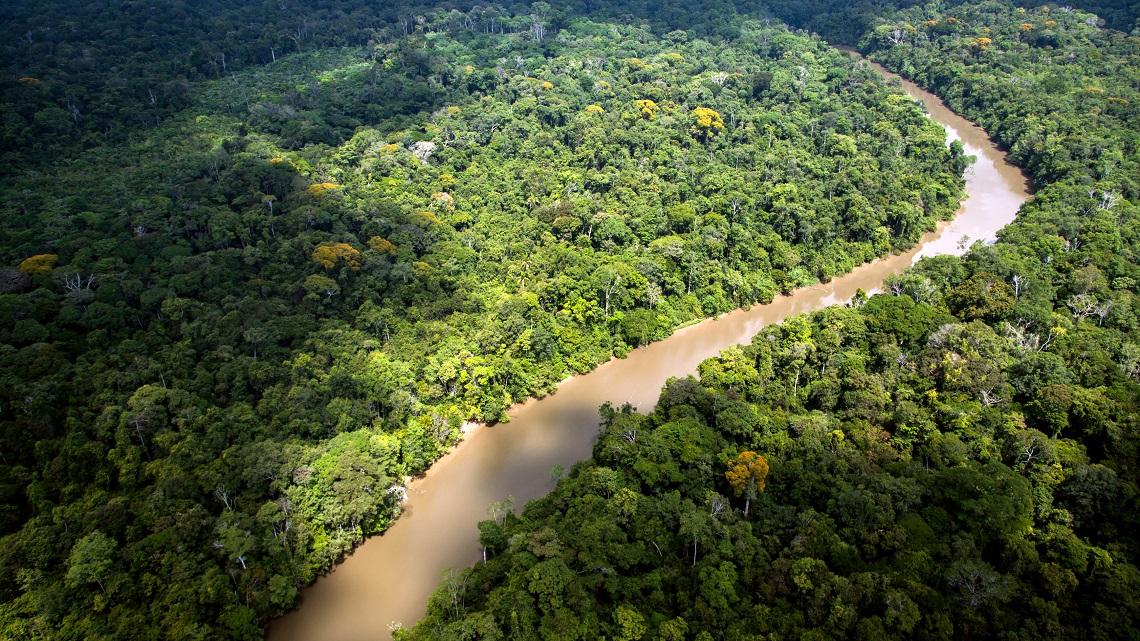 Amazzonia, nel 2019 deforestazione aumentata dell'85%