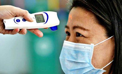 Coronavirus, cosa c'è da sapere