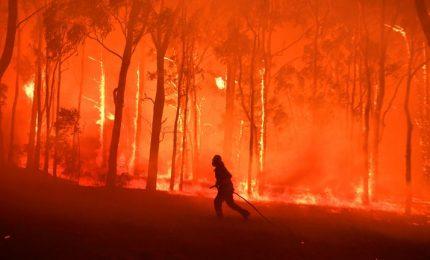 L'Australia continua a bruciare, vento e fiamme fuori controllo