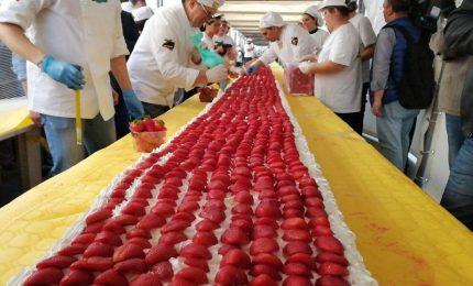 Oltre 1.500 pasticceri per una torta record lunga 6,5 km