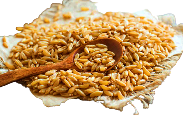 Diabete, un aiuto arriva dal grano khorasan Kamut
