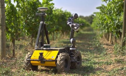 La vigna diventa hitech (e biologica) grazie ai robot