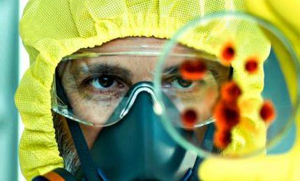 """Dopo Cina, Giappone e Francia, anche l'Italia isola il """"virus"""". Ed è corsa per studiarlo"""
