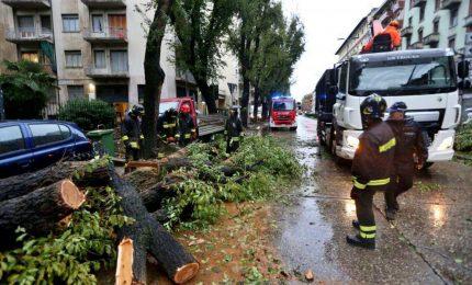 Donna travolta da albero caduto per il vento a Milano: è grave