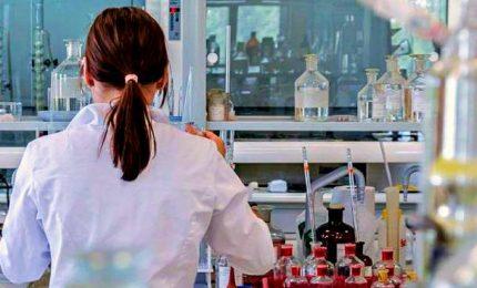 Coronavirus, sette morti. 'Paziente zero', due piste nel Lodigiano. Italiano positivo a Tenerife