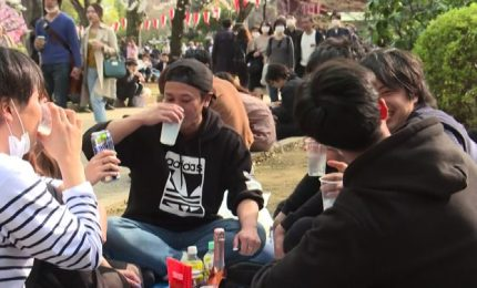 Giappone sfida coronavirus, tutti nei parchi per l'hanami