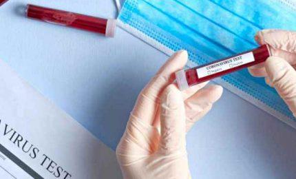 Coronavirus, ecco perché l'Italia ha meno contagi del resto d'Europa