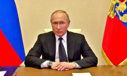 Appello a Putin da Wwf e Onu: è ora di una svolta green in Russia