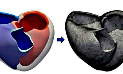 La matematica applicata al cuore, verso la medicina computazionale
