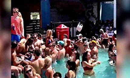 Covid19, una festa in piscina scatena le polemiche Usa