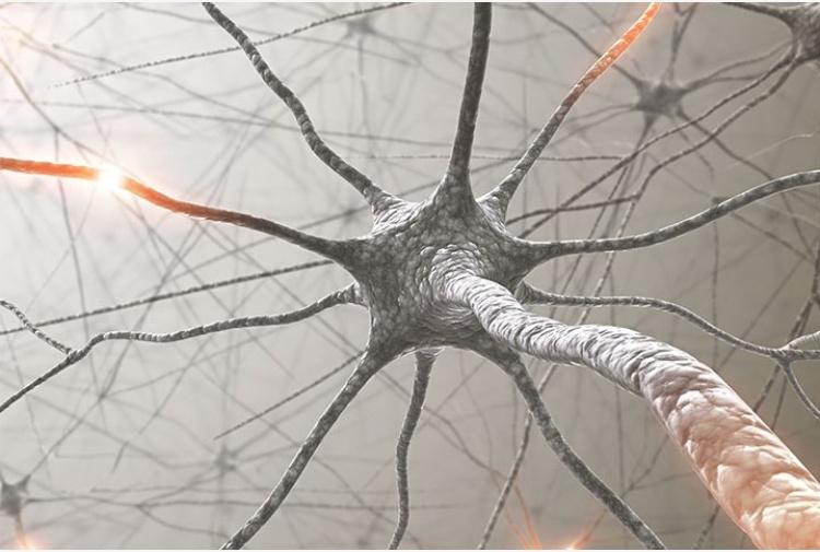 Covid-19, pazienti presentano spesso disturbi neurologici