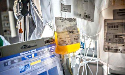 India, nasce la prima banca del plasma per combattere il Covid-19