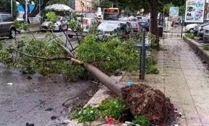Maltempo al Centro-Nord, piogge record in Emilia Romagna