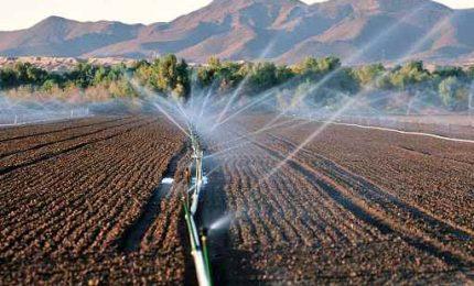 Agricoltura, le università in campo per l'irrigazione intelligente