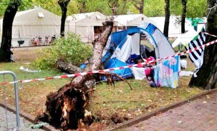 Maltempo, albero cade su una tenda in campeggio: morte 2 sorelline