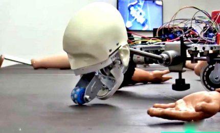 Una mostra di robot che ci osservano: Geumhyung Jeong a Modena
