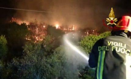 Sardegna, rogo forse doloso: quasi cento ettari in fumo a Budoni