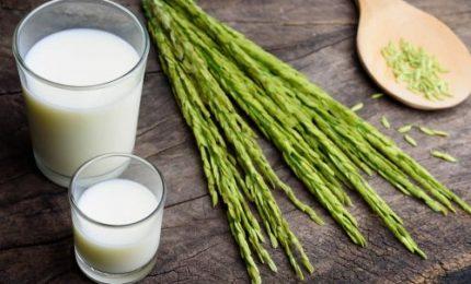 Su Nature lo studio italiano sui benefici del latte fermentato