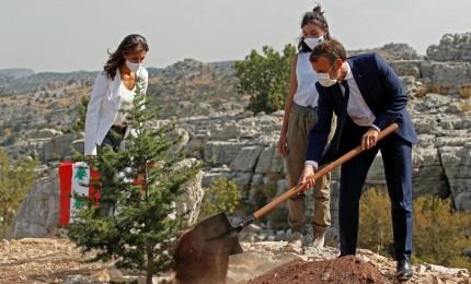 Macron pianta un cedro per celebrare il centenario del Libano
