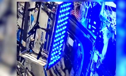 """La luce a led blu che """"inattiva"""" il Sars-Cov2"""