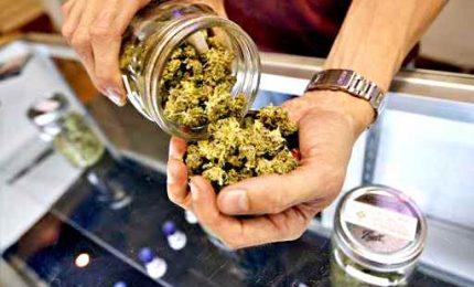 Gravi epilessie, arriva trattamento a base cannabis