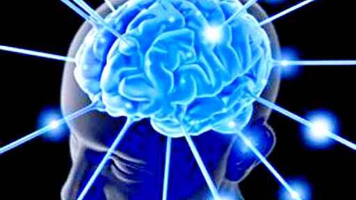 Inibire la molecola miR-29 fa ringiovanire il cervello