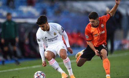 Champions, Real Madrid sconfitto dallo Shakhtar 2-0 e nei guai