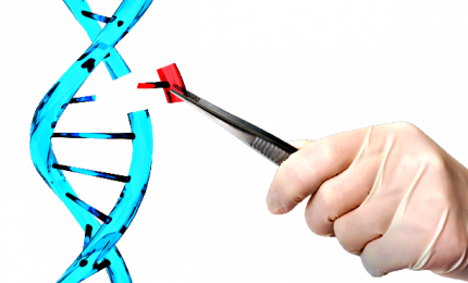 Editing genetico, dal S. Raffaele possibile applicazione clinica