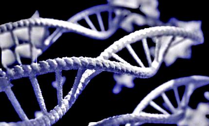 Computer quantistici per studiare la trasformazione delle proteine