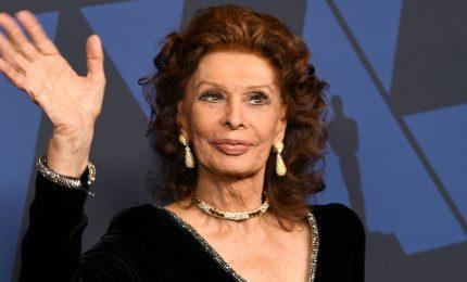 Sophia Loren sarà premiata dal nuovo Museo dell'Academy