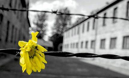 Olocausto, IHRA: discriminazione cresciuta in epoca Covid