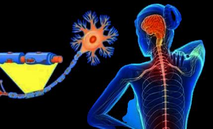 Sclerosi multipla: nuove opzioni terapeutiche per i pazienti