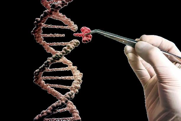 Test genetici preconcezionali nuova frontiera della prevenzione