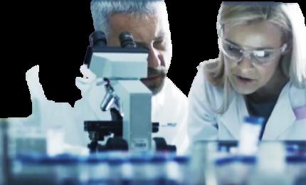 Covid, sistema Pchs: probiotici in campo 24 ore contro il virus