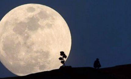Lo spettacolo della Superluna nel cielo della California