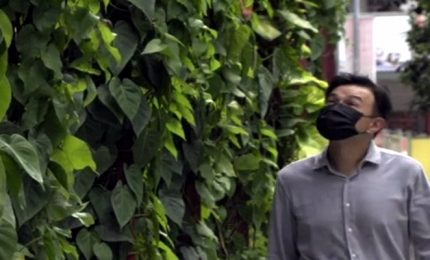 "A Singapore un ""grattacielo vegetale"" per combattere le emissioni"