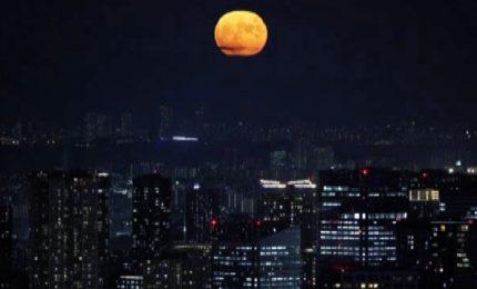 """Il Giappone celebra lo """"Tsukimi"""", contemplazione della luna piena"""