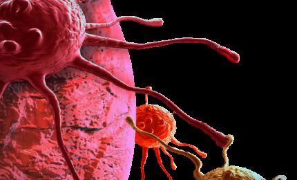 Tumori rari sangue: ricominciare a vivere a partire da un semplice esame