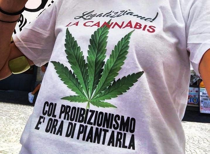 Cannabis, sì referendum su depenalizzazione. Si vota on line